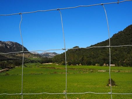 siatki ogrodzeniowe leśne cennik