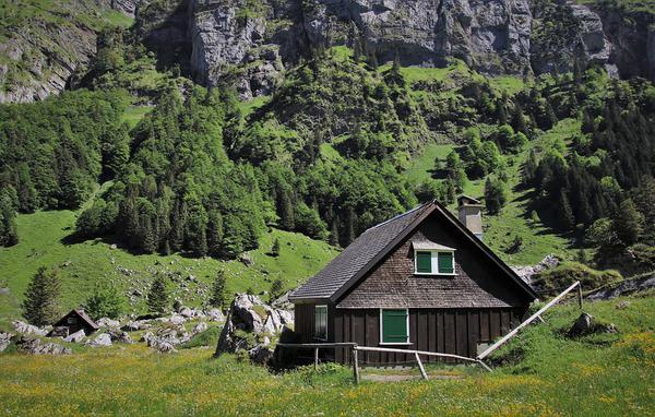 całoroczne domy z drewna zakopane